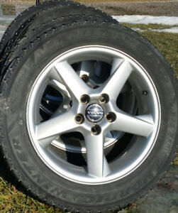 "Volvo 16""snow tires & rims"