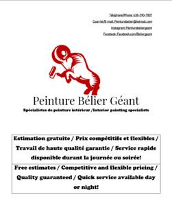 Peinture Intérieur & Extérieur / Travail Général