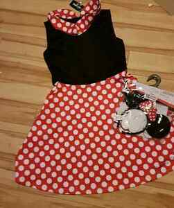 Large size Minnie Mouse adult costume
