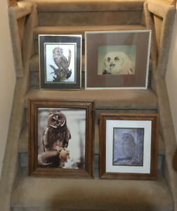 LOT OF FOUR OWL PRINTS ALL FOR ONE PRICE