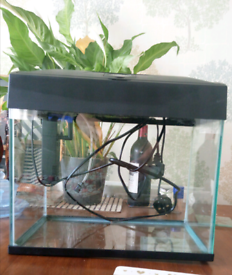 Fish Tank with light and filter