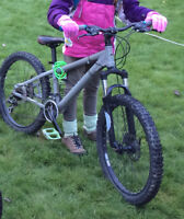 REWARD OFFERED:  Grey mountain bike with green pedals