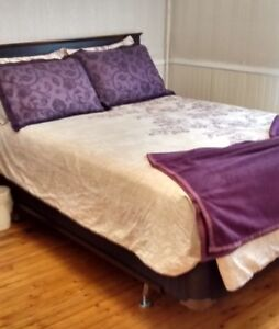 Queen sized Duvet Cover and Matching Shams