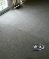 Professional Carpet & Upholstery Steam Cleaning Specials