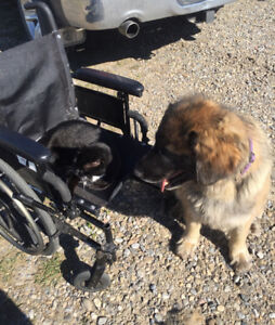 Used wheelchair available