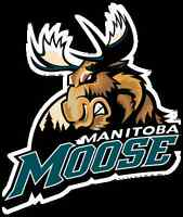 """2 Tickets Sunday's Game Manitoba Moose VS Chicago Wolves CHEAP!"""""""