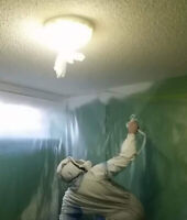 Renovating Your Home? Use Professional Painting Services.