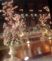 Wedding & all other occasions beautiful decoration !!