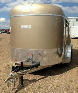 2015 Bergen 14ft Tag Stock Trailer