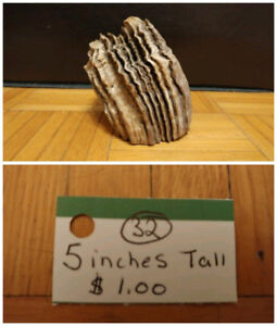 $1.00 Driftwood pieces (Ad #1)