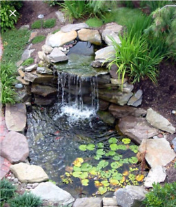 Looking to get rid of your pond?