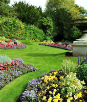 Spring cleanups & lawn maintenance
