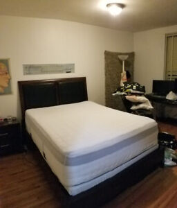 Queen Bed Wooden Frame with Leather Headboard