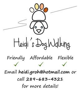 Heidi's Dog Walking ~ Friendly, Flexible, & Affordable