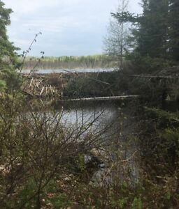 Vacant Lakefront Property in Unorganized TWP near Kirkland Lake