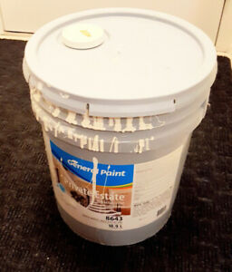 Acrylic Latex PAINT - Flat White (16 L remaining)