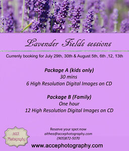 Lavender fields kids or family photography session