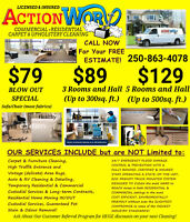 Action Worx Carpet & Furniture Cleaning