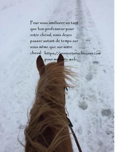 Formation en ligne pour aider votre cheval ainsi que vous même
