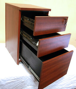 LOCKING  Rolling File Cabinet Caddy  (LETTER & LEGAL) SEE VIDEO