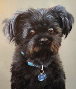 Beautiful hand-painted Oil Portraits of your Pet