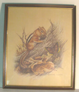 Michael Dumas framed print of Chipmunk