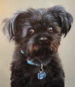Pet Oil Portraits from your Photographs
