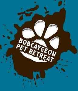 Bobcaygeon Pet Retreat (dogs & cats)