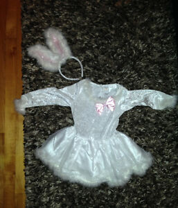 Bunny rabbit Halloween costume size 4T worn once
