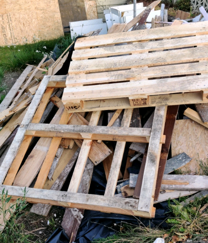 FREE Firewood/Timber for Collection | in Norwich, Norfolk ...