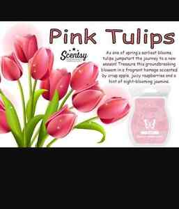 Looking for Pink tulips Scentsy bars