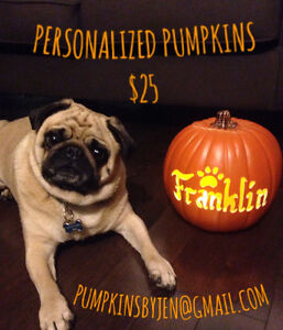Personalized Pet Pumpkins