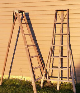 Three legged Apple ladder