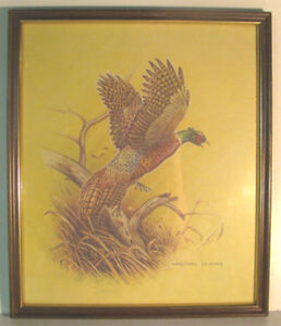 Michael Dumas framed print of Pheasant