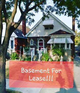 Basement for Lease in Hamilton Mountain