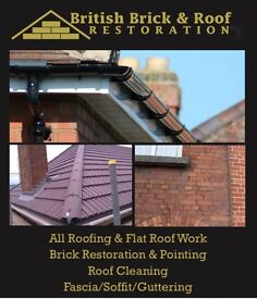 Roof and Damp specialists...unbeatable prices!! Free No Obligation Quote