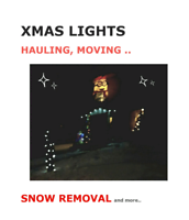 SO->XMAS LIGHTS, HAULING, MOVING, SNOW REMOVAL,TREE TRIMMING..
