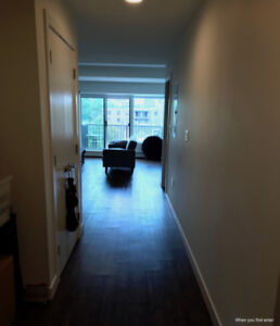 1 Bedroom Apartment for Sublet: Downtown Halifax.