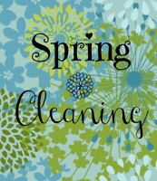 From Chaos To Spring Clean! Book Now