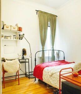 Cute Furnished Room Next to McGill: November-May