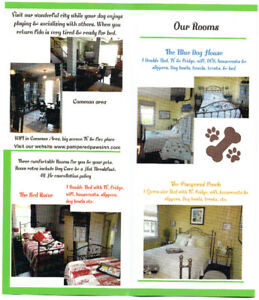 Small previous B&B clean room available in Doggy Daycare/Kennel