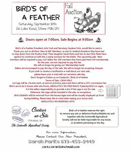 Bird's of a Feather, Poultry Auction