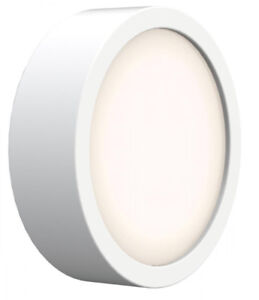 Porthole Matte White Flushmount Light