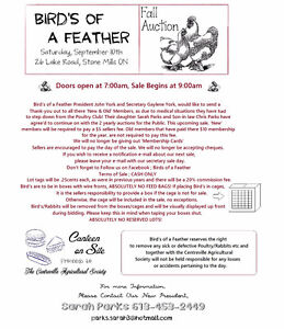 Bird's of a Feather - Poultry Auction