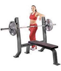 Commercial Grade Olympic Bench gym weights exercise