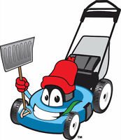FALL CLEAN UP / SNOW REMOVAL  / BOOK EARLY