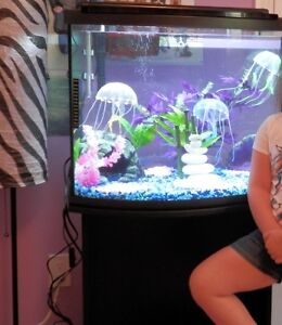 26 gallon fish tank with rounded bow front and stand