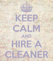 """""""I Love Cleaning!"""" said the CLEAN QUEEN"""