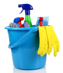 Experienced and Reliable Cleaners