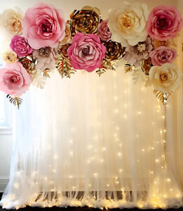 Backdrop & Event Decor for RENT